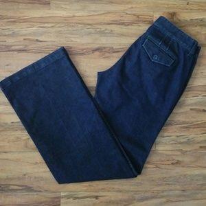 Ann Taylor LOFT Curvy Flare Indigo Denim Jeans
